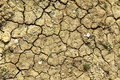 Cracked mud surface Stock Image