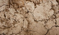 Cracked mud wall Stock Image