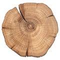 Cracked oak split Royalty Free Stock Photo