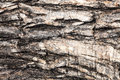 Cracked old wood texture and background Stock Photography