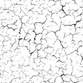 Cracked seamless pattern vector texture. Black cracks on white b Royalty Free Stock Photo