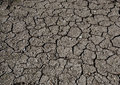 Cracked soil Royalty Free Stock Photo