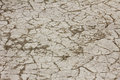 Cracked texture desert s dry rough ground Royalty Free Stock Image