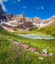 Cracker Lake and wild lilies in Glacier national park, Montana Royalty Free Stock Photo