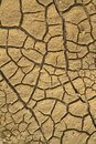Cracks in dry earth Stock Images