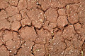 Cracks on dry ground Royalty Free Stock Image