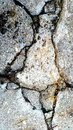 Cracks on the ground beauty everywhere beautiful found beauty abstract minerals Stock Images