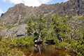 Cradle mountain np australia artist pool national park tasmania Royalty Free Stock Photo