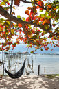 The cradle under tree near the sea at yor island in songkhla thailand Royalty Free Stock Photo