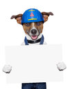 Craftsman dog holding a placard with paws Stock Image