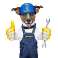 Craftsman dog with one thumb up holding a tool Stock Photo