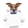 Craftsman dog with spanner wrench in mouth holding a blank banner Stock Photo