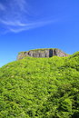 Crag mountain with fresh verdure Royalty Free Stock Photo