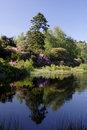 Cragside Reflections Royalty Free Stock Photo