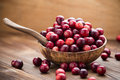 Cranberries. Royalty Free Stock Photography