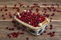 Cranberries in a basket on wooden table Royalty Free Stock Photo