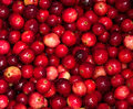 Cranberries boiling in pot Royalty Free Stock Photos