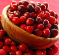 Cranberries in a bowl Royalty Free Stock Image