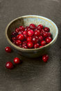 Cranberries bowl full of fresh ripe Royalty Free Stock Image