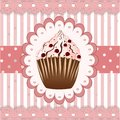 Cranberries cupcake on the pink background Stock Images