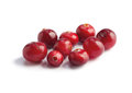 Cranberries on white Royalty Free Stock Photos