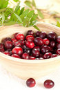 Cranberries in wooden bowl Stock Photos