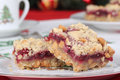 Cranberry Bars Stock Image