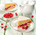 Cranberry cake Stock Image