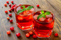 Cranberry cocktail with ice Royalty Free Stock Photo