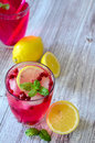 Cranberry cocktail Royalty Free Stock Photo
