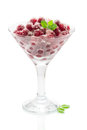 Cranberry dessert isolated on white background Royalty Free Stock Images
