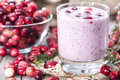 Cranberry milkshake with fresh fruits Royalty Free Stock Image
