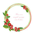 Cranberry round frame isolated on white background border berry garland ripe red cranberries with leaves vector illustration Stock Photos