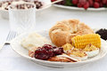 Cranberry Sauce Over Roasted Turkey Royalty Free Stock Photo