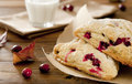 Cranberry scones closeup of freshly baked with a glass of milk in a fall setting Royalty Free Stock Photo