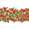 Cranberry seamless background ripe red cranberries with leaves vector illustration border berry garland Stock Photo