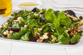 Cranberry walnut and feta salad a tasty low calorie treat with a dijon mustard dressing Royalty Free Stock Images