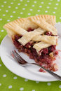 Cranberry Walnut Pie Slice Stock Photo