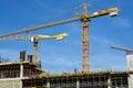 Crane sky p beautiful view of yellow big blue Stock Photography