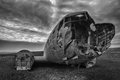 Crashed palne wreck of a us military plane in the middle of the nowhere the plane ran out of fuel and in a desert not far from Stock Images