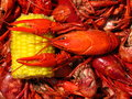 Royalty Free Stock Image Crawfish Boil