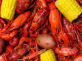 Crawfish Boil Royalty Free Stock Images