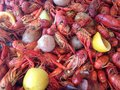 Crawfish boil red hot boiled louisiana with corn potatoes lemons garlic sausage spread out on newspaper louisiana seafood Stock Photos
