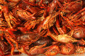 Crawfish on ice in market many fish Royalty Free Stock Photos