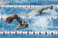 Crawl swimmer male swimming in a competition swim pool Stock Images