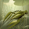 The crayfish illustration with against water lilies in fresh water drawn in cartoon style Stock Photography