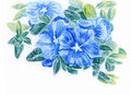 Crayon illustration a bunch of blue flowers on paper Stock Images