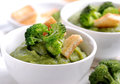 Cream of broccoli with crostini Stock Photography
