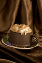 Cream coffee with chocolat crumb Royalty Free Stock Image