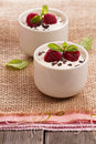 Cream dessert with raspberries in small cups Royalty Free Stock Photos